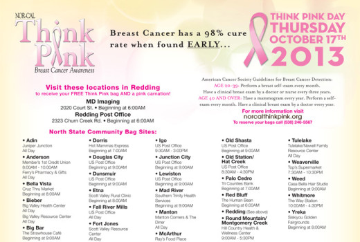 NorCal Think Pink 2013
